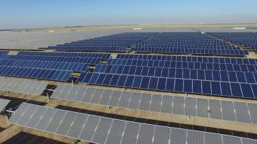 Large Solar Farm Cleaning